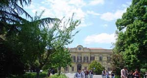 Pionta Arezzo