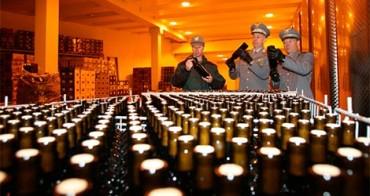 """Verifiche sull'IGP """"olio extravergine toscano"""", denunciato e multato per 11mila euro un imprenditore agricolo aretino"""
