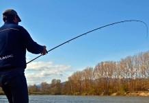 Arci Pesca Fisa