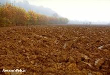 Agricoltura - campo arato