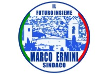 Futuro Insieme - Logo