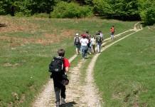 Parco Casentino - escursionisti