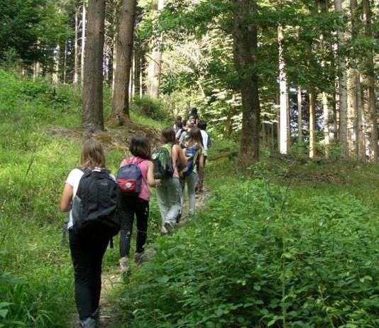 escursionisti nel parco