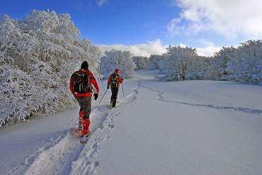 Alla scoperta dei paesaggi invernali
