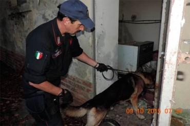 Detiene droga all' interno di un bar: arrestato dai carabinieri 40 enne extracomunitario