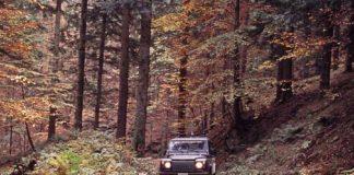 Forestale - Parco del Casentino