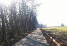 Ciclopista sull'Archiano
