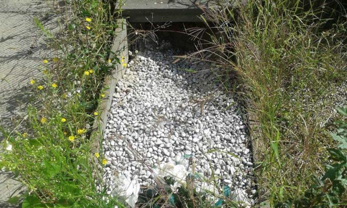 Degrado nei cimiteri del Comune: loculi e tombe in stato di abbandono