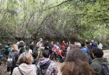 Cortona Maec: domenica 29 settembre trekking tra arte e cibo